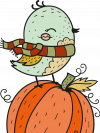 bird sitting on a pumpkin